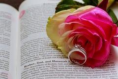 Wedding rings on Bible. Rose, wedding rings, book Stock Photo