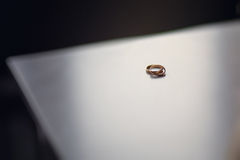 Wedding rings on blurred surface Stock Images