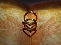 Wedding rings on book. stock image