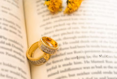 Wedding rings. On the book,valentine concept Stock Photo