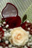 Wedding rings on bouquet Stock Images