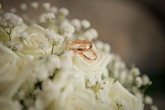 Wedding. Rings on  bouquet Stock Image