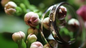 Wedding Rings. On a Bouquet of the Bride. Camera Focusing on Bridal Rings. Closeup Macro Footage stock video footage