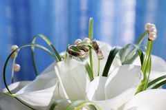 Wedding rings and bouquet. Closeup Royalty Free Stock Photos
