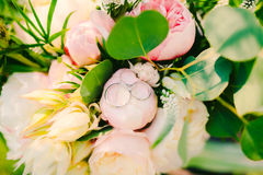 Wedding rings on a bouquet of peonies Stock Photography