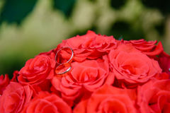 Wedding rings on a bouquet of roses. Wedding gold rings on a bouquet of  red roses Royalty Free Stock Images