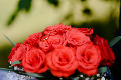 Wedding rings on a bouquet of roses. Wedding rings on a bouquet of  red roses Royalty Free Stock Photo