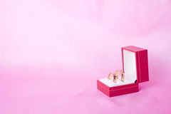 Wedding rings in a box Stock Images