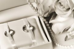 Wedding rings in a box with bouquet Stock Images
