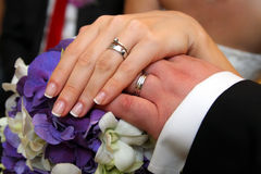 Wedding rings on bride and groom hands Royalty Free Stock Image