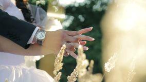 Wedding rings bride and groom hands close-up stock footage