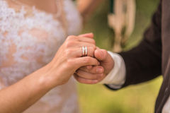 Wedding rings. The bride and groom to hold hands, wedding rings Royalty Free Stock Photography