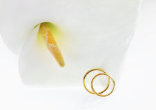 Wedding rings. With Calla flower Royalty Free Stock Photography