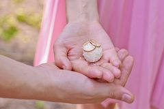 Wedding rings on the candy Stock Images