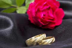 Wedding rings. Close up with pink roses Stock Image