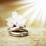 Wedding rings close up in rustic style Stock Image