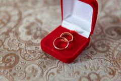 Wedding rings close up Royalty Free Stock Image