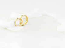 Wedding rings. Close-up Wedding rings and white petals Stock Photos
