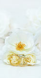 Wedding rings. Close-up of wedding rings and white roses Royalty Free Stock Images