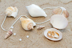Wedding rings in cockleshell on sand. Composition of wedding rings in sea cockleshells on sand Royalty Free Stock Image