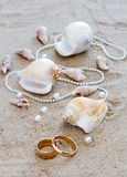 Wedding rings and cockleshells on sand. Composition of wedding rings and sea cockleshells on sand Stock Image