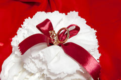Wedding rings on colorful fabric Stock Photo