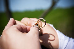 Wedding rings with the couple Stock Image