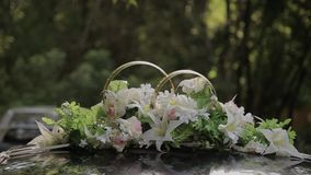 Wedding rings on a cushion for rings.  stock video footage