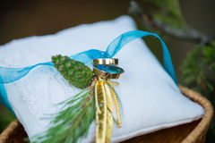 Wedding rings on cushion Royalty Free Stock Images