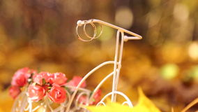 Wedding rings on a decorative small bike in the yellow leaves. In autumn park stock video