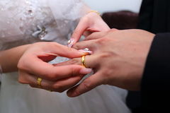 Wedding Rings Exchange Stock Photos 1 002 Images