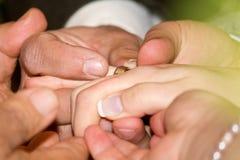 Wedding rings exchange. Between bride and groom royalty free stock images