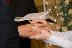 Wedding rings exchange Stock Images