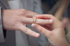 Wedding. Rings on the fingers Suite Stock Photos