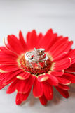 Wedding Rings on Flower. Bride and Grooms wedding rings stacked on top side of red flower Stock Image