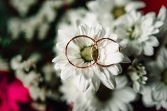 Wedding rings on a flower. Close up Wedding rings on a white flower Stock Images