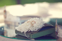 Wedding rings on a flower Royalty Free Stock Photos