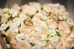 Wedding rings on flower of rose Stock Images