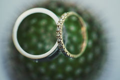 Wedding rings on a flower Royalty Free Stock Photo