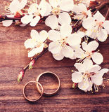 Wedding rings. Flowering branch flowers on wooden surface. Royalty Free Stock Image