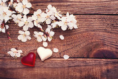 Wedding rings. Flowering branch flowers on wooden surface. Stock Images