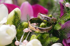 Wedding Rings with flowers. Wedding Rings detail with flowers Royalty Free Stock Photos