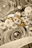Wedding rings on the flowers Royalty Free Stock Images