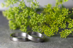 Wedding rings and flowers. Wedding rings in silver on a slate with flowers Royalty Free Stock Image
