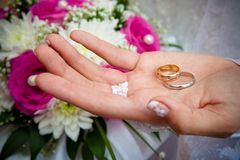 Wedding rings and flowers. Stock Photography