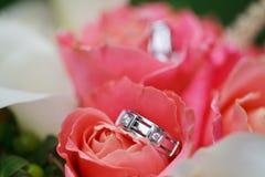 Wedding rings on the flowers. Beautiful wedding rings on the flowers Royalty Free Stock Photos