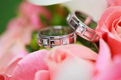 Wedding rings on the flowers Royalty Free Stock Image