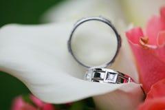 Wedding rings on the flowers. Beautiful wedding rings on the flowers Stock Photo