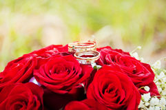 Wedding rings  on flowers. Wedding rings for a newly-married couple on flowers Royalty Free Stock Photography