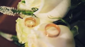 Wedding rings on flowers.  stock footage